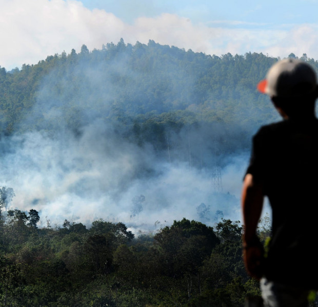 South Sumatra governor: 'No haze this year, next year and the year after'