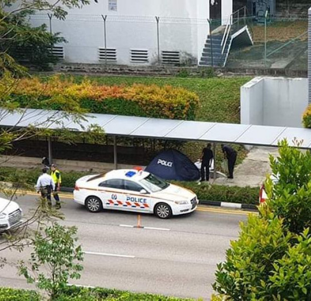 Maid dies in hit-and-run after car slams into walkway at Farrer Road