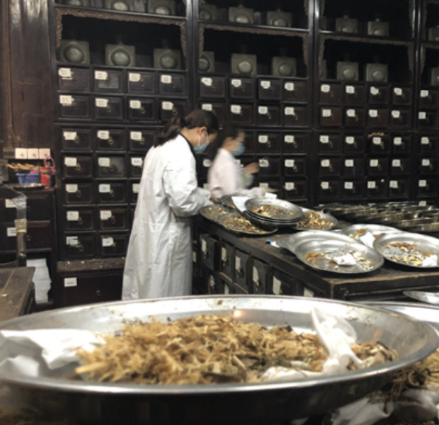 Combining TCM, Western medicine effective against virus, says China official