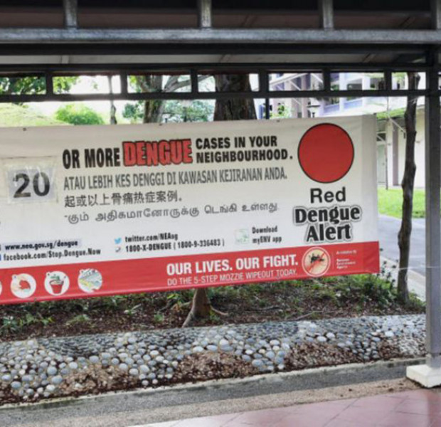 63-year-old man in Hougang is fourth person to die from dengue this year