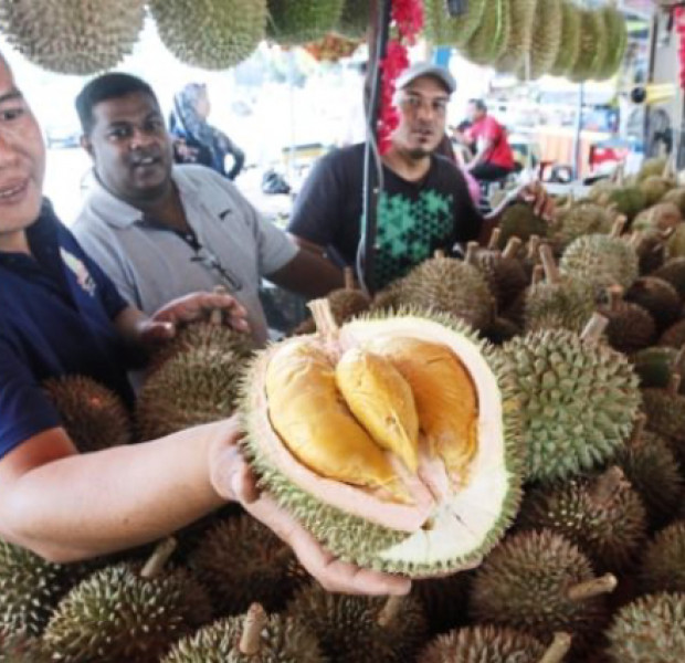 Tourists can fly to Penang just for a durian buffet