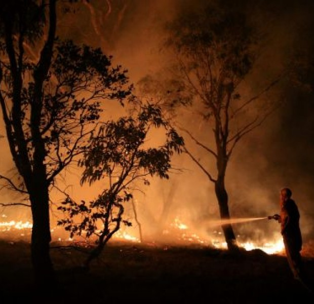 Australia begins wide-ranging inquiry into deadly bushfires