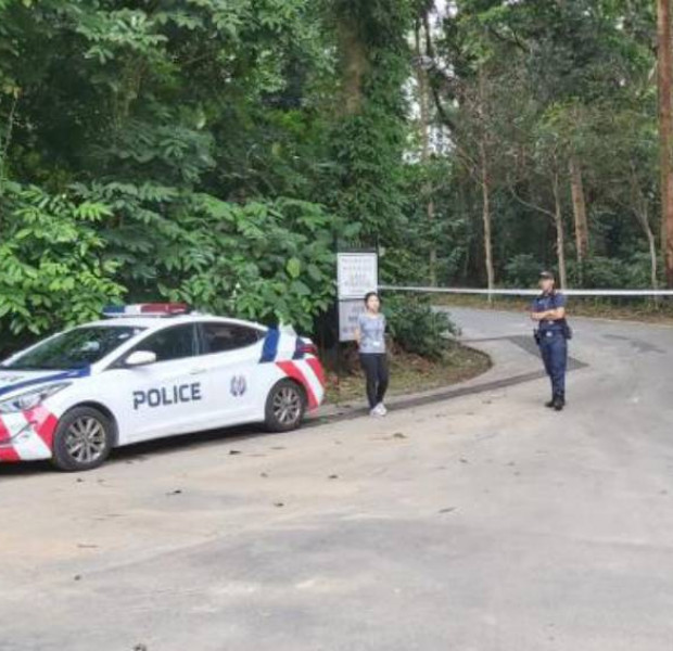 Woman and 5-year-old son found dead near Bukit Timah Nature Reserve