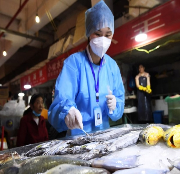 With frozen food clampdown, China points overseas as source of coronavirus