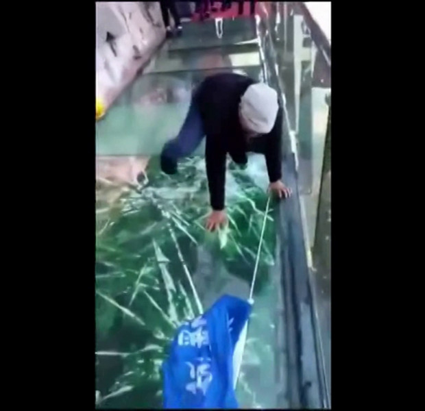 WATCH: Visitors pranked on China glass bridge that appears to shatter beneath them