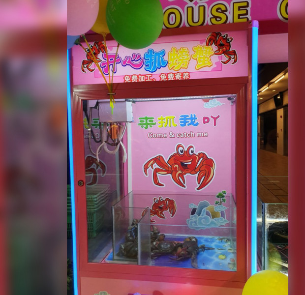 Punggol seafood restaurant in hot water over 'inhumane' live crab claw machine