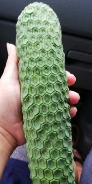Pineapple or banana? This freaky fruit is creeping people out