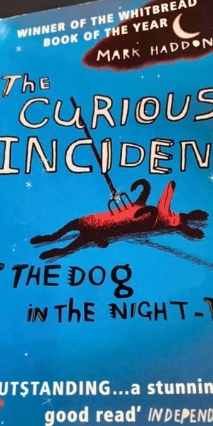 Book containing swear words chosen by secondary school for 'literary merit': MOE