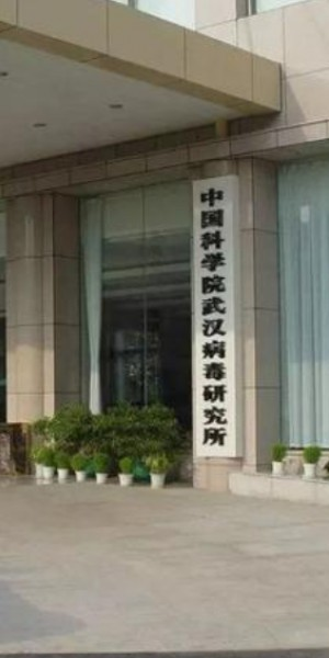 Is Wuhan Institute of Virology responsible for the novel coronavirus outbreak?