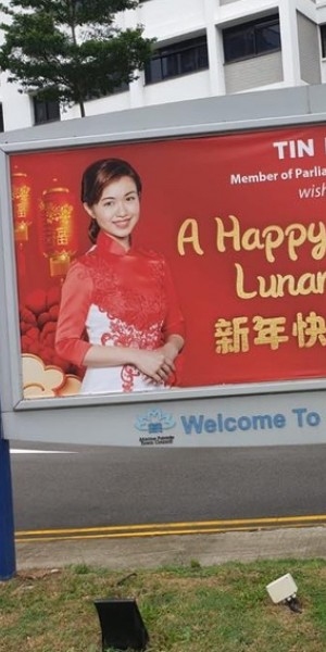 Tin Pei Ling's CNY mood dampened by racy photoshopped image of her spreading around