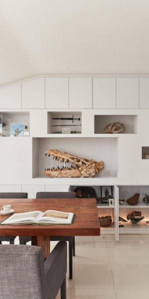 House Tour: The museum-like home of a fossil collector