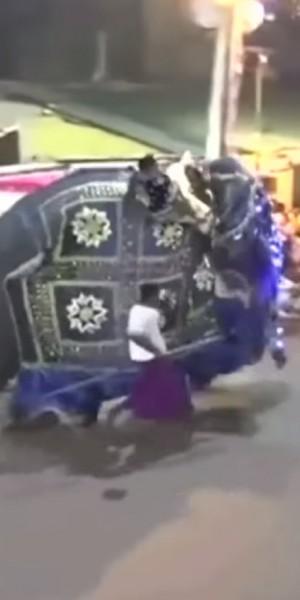 Elephants trample crowd at Sri Lanka parade, at least 18 injured