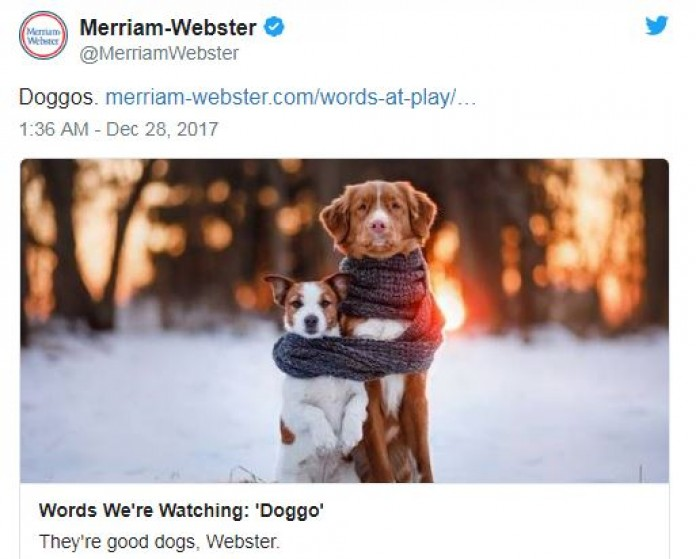 Merriam-Webster saves mess that was 2017 by including 'doggo' in the