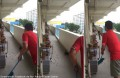 Watch dozens of cockroaches swarm HDB corridor