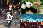 Kids take centre stage at River Safari's first trick-or-treat event