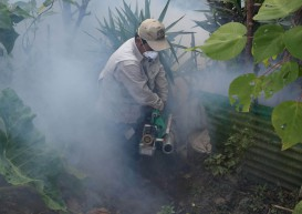 First Zika-linked deaths reported in Colombia