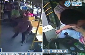 Elderly woman fined, jailed for beating bus driver with metal cane