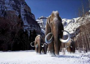 S'pore-US team 'takes first step to reviving mammoth'
