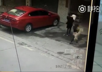 Woman in China suffers broken neck after falling dog lands on her