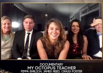 Human-octopus love story up for best documentary Oscar