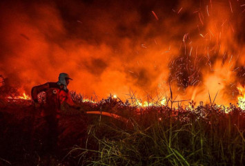Indonesia in battle to stop forest fires