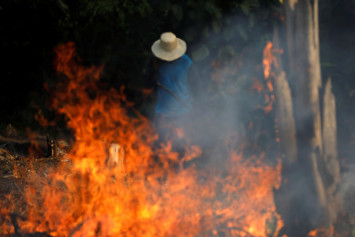 Amazon burning: Brazil reports record forest fires