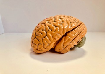 How do we fix our brains once the Covid-19 nightmare finally ends?