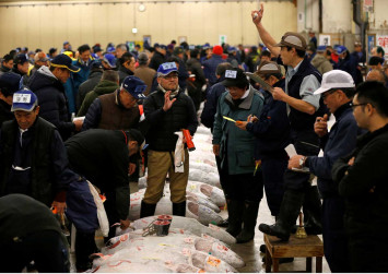 Tsukiji fish market caught in a stink