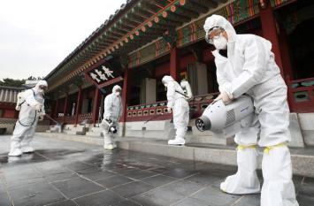 South Korea reports 142 more coronavirus cases, total 346