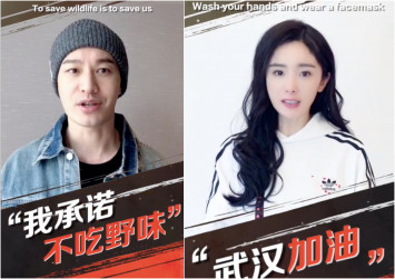17 celebs including Huang Xiaoming, Angelababy, Yang Mi pledge against consumption of wildlife