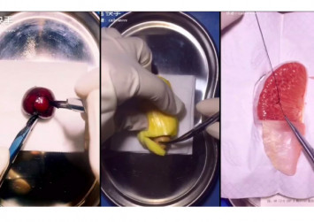 China's 'fruit surgeon' dissects durians and stitches mangoes for online fans