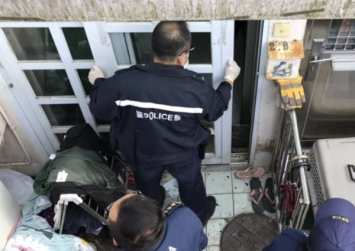 Woman, 29, arrested after 45 cats found in Hong Kong flat in a 'weak and skinny' state