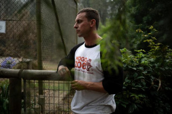 Brave as lions: Zoo heroics save animals from Australia's raging fires