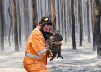 How you can help victims of Australia's bushfires