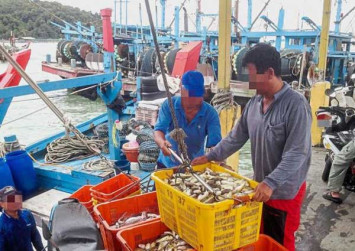 Pufferfish sold to the unwary in Malaysia