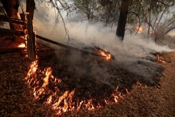 'My kids are deceased': US wildfire kills 2 children, 4 others