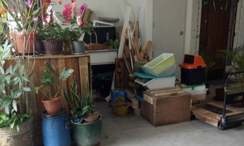 Town council engaging with Canberra resident who cluttered corridor with plants, planks and more