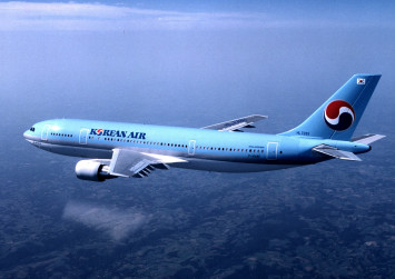 Police probe Korean Air chairman's wife over abuse