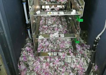 Rats break into Indian bank's ATM, munch through S$24,000 in cash