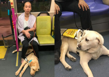 Woman with guide dog barred from boarding bus, but driver helps her find a seat