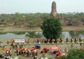 Elephant ride business told to leave Thailand historical park