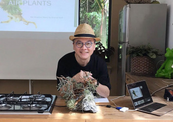 This Singaporean air plant collector makes amazing art displays that don't look like plants at all