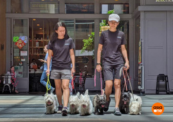 Their dogs are so 'guai' parents have asked them to train their kids to behave
