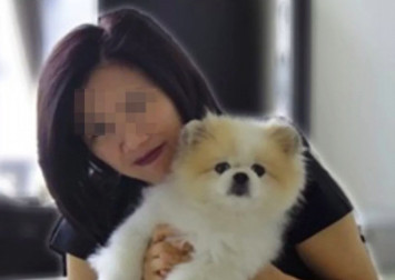 First dog found with coronavirus has died after returning home virus-free from quarantine, Hong Kong authorities reveal