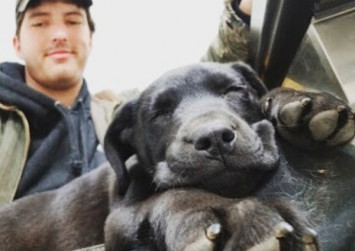 Deaf rescue puppy adopted by deaf man in US learns sign language