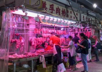 Hong Kong pig imports suspended after swine fever case - but traders want no cull