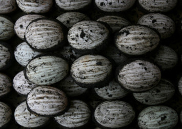 Italian police confiscate hundreds of century eggs, calling them inedible