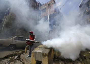 Zika, dengue to threaten up to a billion more people as climate warms