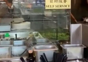 Rat spotted scurrying around food trays in Toa Payoh restaurant; NEA investigating