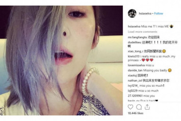 Is Taiwanese singer Elva Hsiao making a comeback?